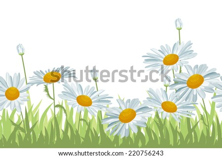 Seamless horizontal background with white daisies - stock vector
