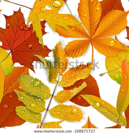 Seamless pattern from autumn leaves on the white background 1 - stock vector