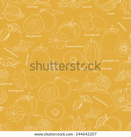 Seamless pattern with citrus fruit on an orange background. Vector illustration for your design - stock vector