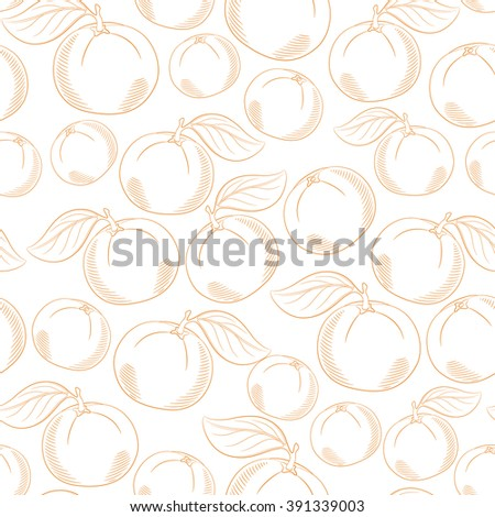 Seamless pattern with oranges - stock vector