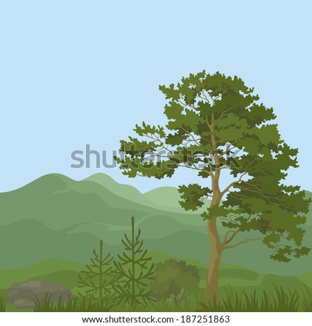 Seamless, summer mountain landscape with pine trees, firs, green grass and blue sky. Vector - stock vector
