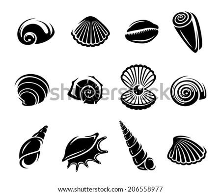 Seashells set. Vector - stock vector