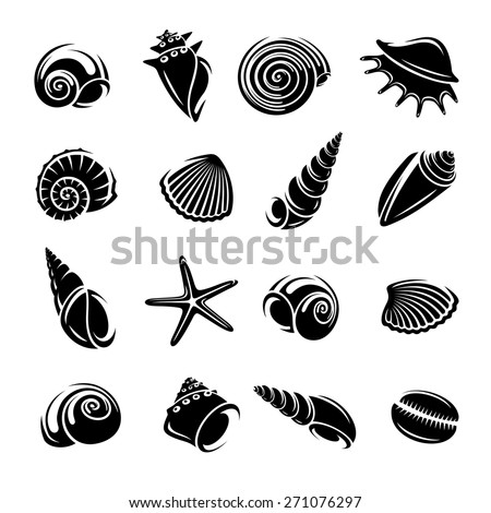 Seashells set. Vector - stock vector