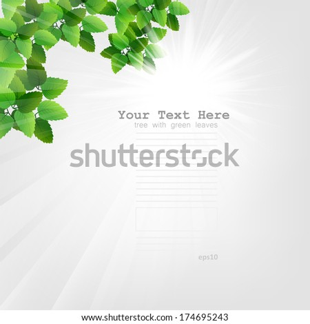 Season tree with green leaves. Green tree on white background. Spring tree with green leaves. Vector Illustrations - stock vector