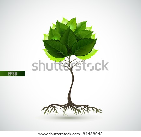 Season young  tree with green leaves - stock vector