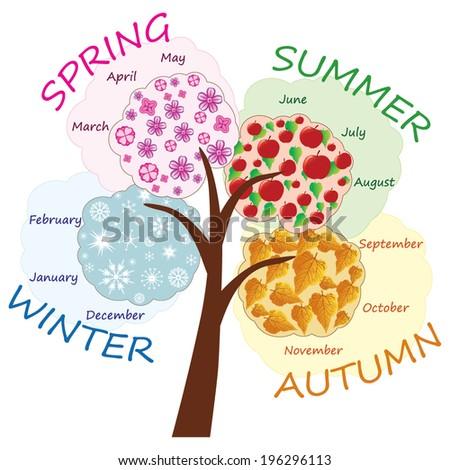 Seasons tree vector - stock vector