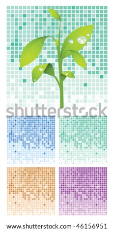 seedling and colored square boxes - stock vector