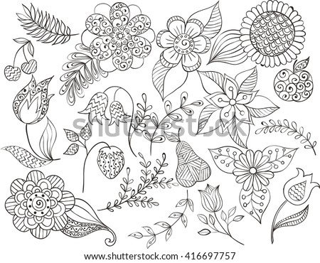 set doodle floral , outline leaves, fruits, twigs, flower. Black white design elements. floral doodle pattern. vector, leaves, sunflowers, cherry, strawberry, tulip, pear, stems, Bluebell, campanula. - stock vector