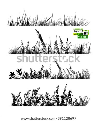 Set grass horizontal line. Vector - stock vector