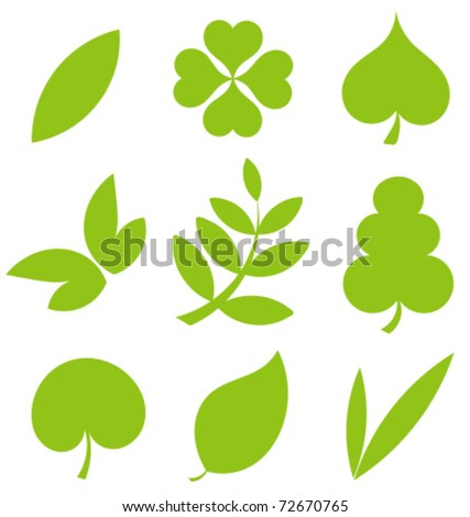 Set od various tree leaves. Vector illustration collection - stock vector