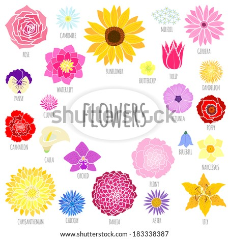 Set of abstract flat flowers. Vector illustration - stock vector