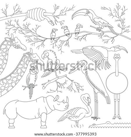 Set of african animals and birds. Vector african animals and birds in flat, lineal style. Each animal and bird is isolated, separately grouped. - stock vector