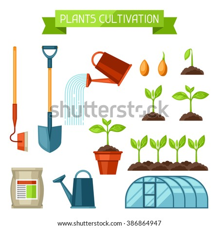Set of agriculture objects. Instruments for cultivation, plants seedling process, stage plant growth, fertilizers and greenhouse. - stock vector