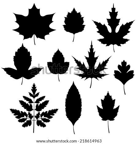 Set of autumn leaves silhouettes. Vector illustration. - stock vector