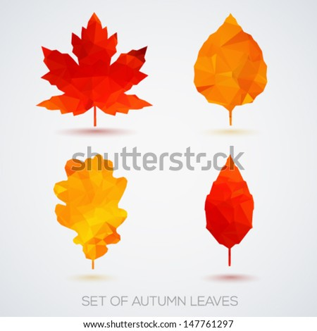 Set of autumn leaves. Vector illustration. - stock vector