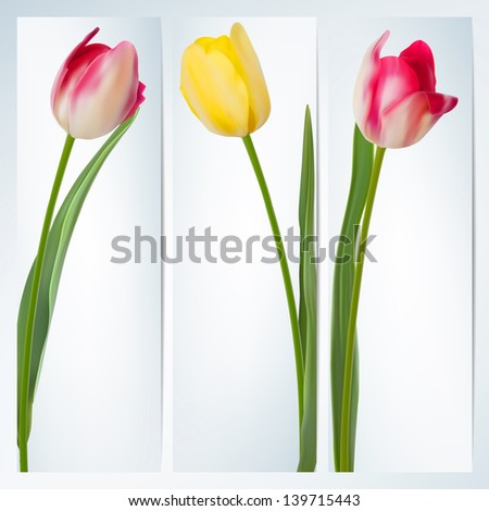 Set of banners with colorful flower. And also includes EPS 10 vector - stock vector