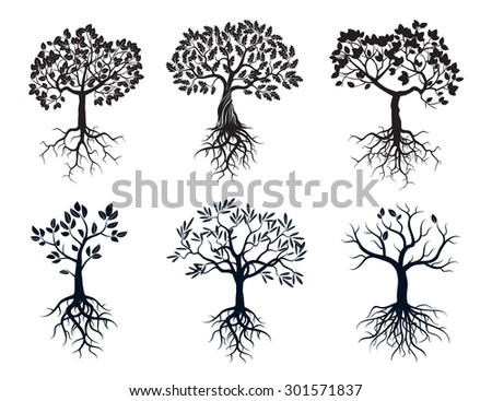 Set of Black Trees and Roots - stock vector