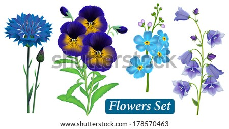 Set of blue wild flowers on a white background, vector.  Cornflower (Centaurea cyanus), Pansy, Forget-me-not flower, Campanula bell.  - stock vector