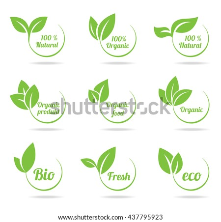 Set of bright green labels with leaves for organic, natural, eco, bio products isolated on white background. - stock vector