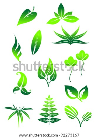 Set of bright green leaves icons and symbols isolated on white background, such a logo. Jpeg version also available in gallery - stock vector
