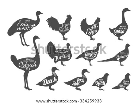Set of butchery labels templates. Poultry icons with sample text. Poultry silhouettes collection for groceries, meat stores and advertising. Vector labels design. - stock vector