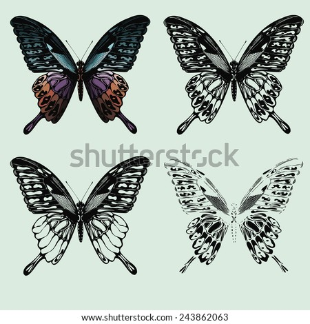 Set of butterflies. hand-drawing. Vector illustration. - stock vector