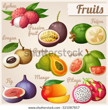 Set of cartoon food icons. Exotic fruits. Lychee (litchi), passion fruit, feijoa, longan, papaya (pawpaw), guava, fig, mango, pitaya (dragon fruit) - stock vector