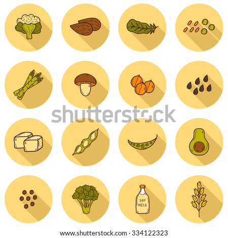 Set of cartoon hand drawn objects on vegan source of protein theme: tofy, soya beans and milk, quinoa, lentil, chia. Healthy vegetarian food concept for your design - stock vector