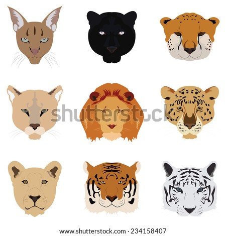 Set of Cat Tiger and Lion Vector and Icon - stock vector