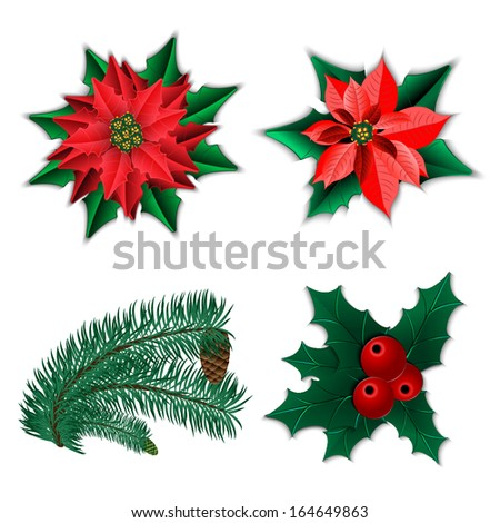 Set of Christmas decorations. Christmas flower poinsettia and holly and fir-tree branch with cone isolated on white. Vector illustration. - stock vector