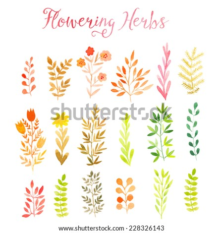 Set of colorful autumn leaves. Vector illustration. - stock vector