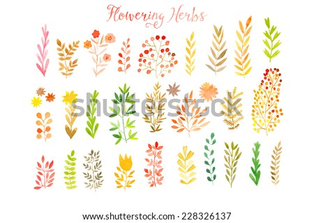 Set of colorful autumn leaves. Vector illustration.vector set of red autumn watercolor leaves and berries, hand drawn design elements - stock vector