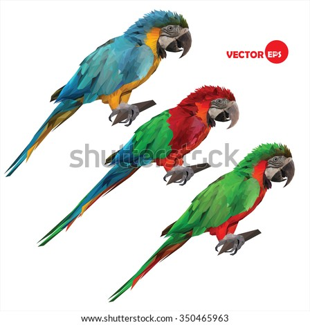 set of colorful tropical macaw parrots sitting on a wood stick. geometric, vector illustration done in low polygon (low poly) style on a white background - stock vector