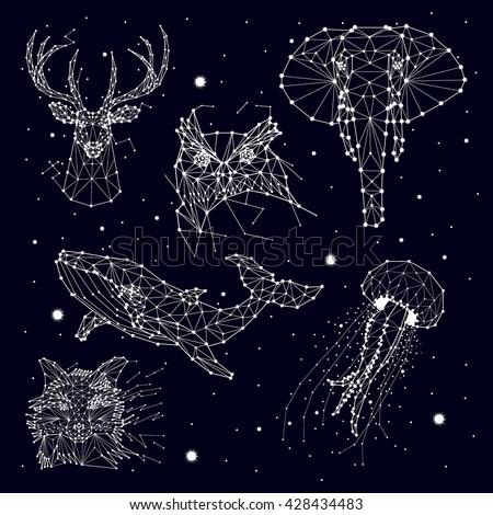 set of constellation , elephant, owl, deer, whales , jellyfish , fox , star , vector graphics - stock vector