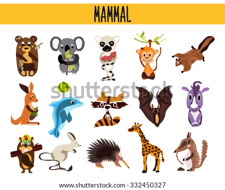 Set of Cute cartoon Animals mammals living in different parts of the world forests, seas and tropical jungles .Koala, lemur, monkey, bear, rhinoceros, beaver, anteater, Rhino . Vector illustration - stock vector