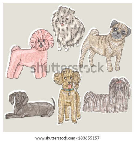Set of cute little breed dogs. Bichon, pug, spitz, dachshund, poodle, shih tzu. - stock vector