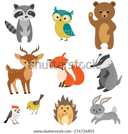 Set of cute woodland animals isolated on white background. - stock vector