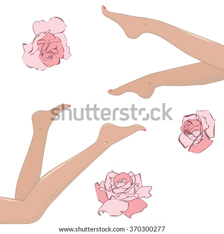 set of design elements with roses and womens  legs - stock vector