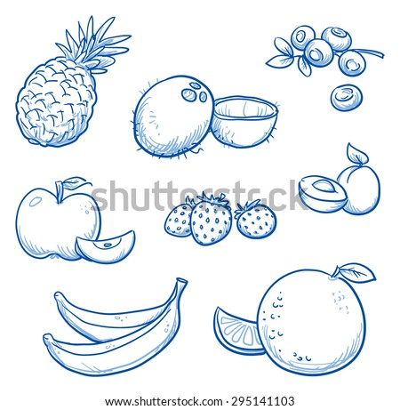 Set of different fruits: orange, coco nut, banana, apple, strawberry, apricot, blueberry, pineapple.  Hand drawn doodle vector illustration. - stock vector