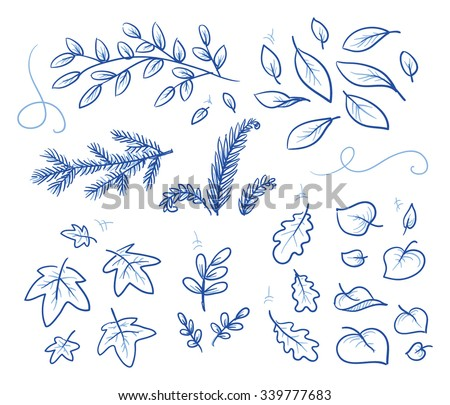 Set of different leaves and branches. Hand drawn vector illustration. - stock vector