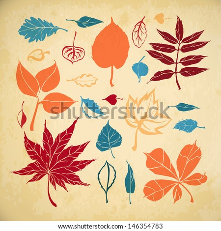 Set of different leaves on paper background. Autumn leaves - stock vector