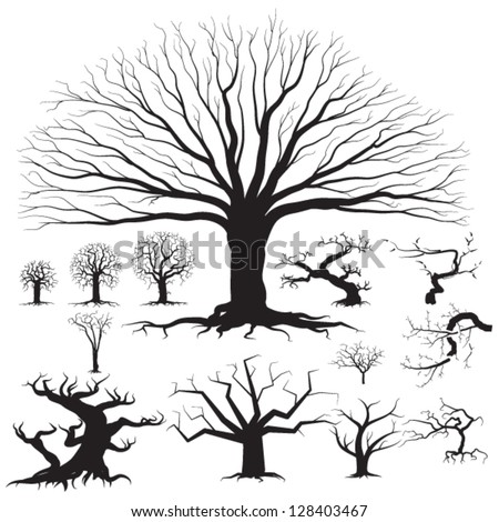 Set of different tree silhouettes - detailed vector illustrations, great for icon creation - stock vector
