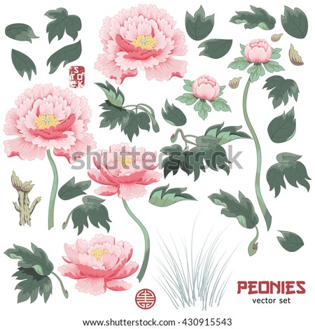 Set of elements of  peony flower, leaves and grass to create designs. Vector illustration imitates traditional Chinese ink painting. - stock vector