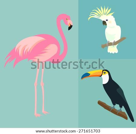Set of exotic birds. Flamingo, toucan, parrot cockatoo. Vector. - stock vector