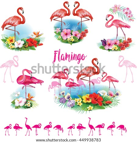 Set of Flamingoes and Arrangement from tropical flowers  - stock vector