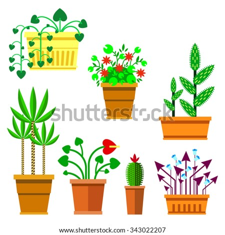 Set of flat flowers on white background. Flowers in pots - vector illustration. - stock vector