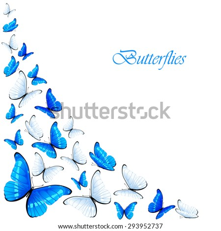 Set of flying blue and white butterflies, illustration. - stock vector