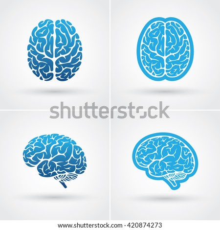 Set of four blue brain icons. Top and side view - stock vector