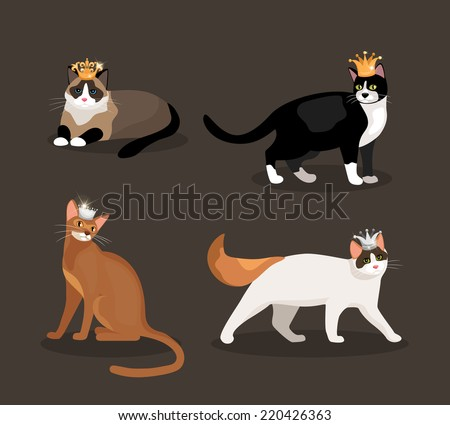 Set of four cats wearing crowns with different colored fur one standing  walking  lying and sitting  vector illustration - stock vector