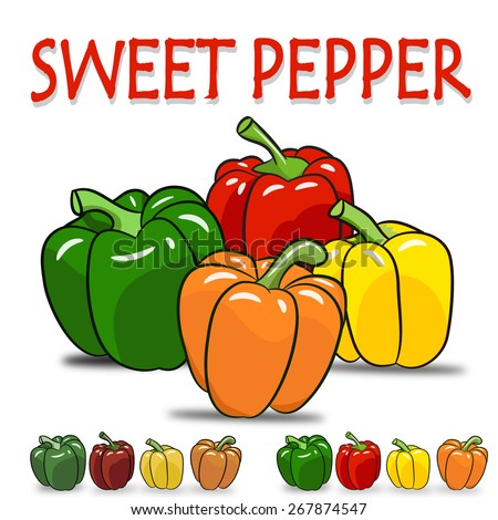 Set of four color,green ,red ,yellow, orange sweet pepper and retro color with isolated on white background - stock vector